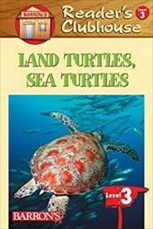Land Turtles, Sea Turtles 2934396
