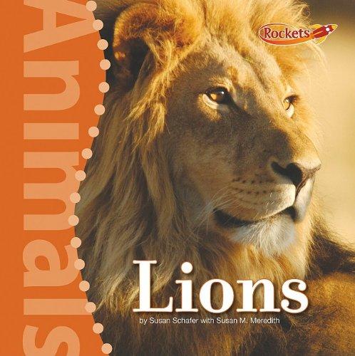 Lions 9780761443445