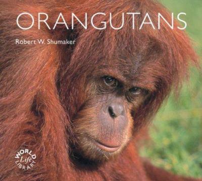 Orangutans 9780760329993