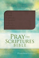 Pray the Scriptures Bible Brown Duravella 9780764208584