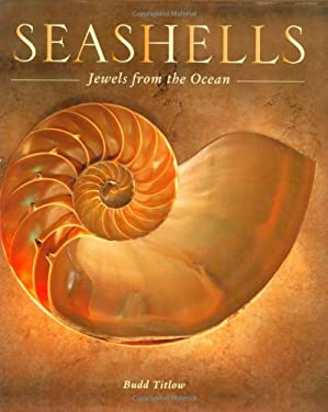 Seashells: Jewels from the Ocean 9780760325933