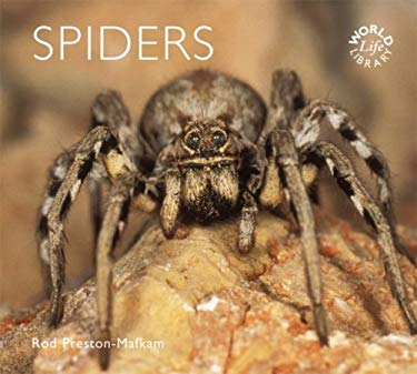 Spiders 9780760330012