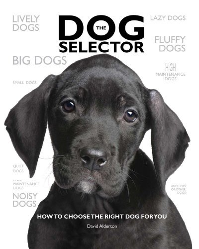 Dog Selector : How to Choose the Right Dog for You