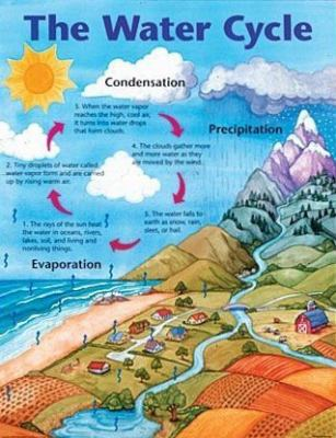 The Water Cycle by School Specialty Publishing, Carson-Dellosa ...