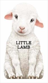 This Little Lamb