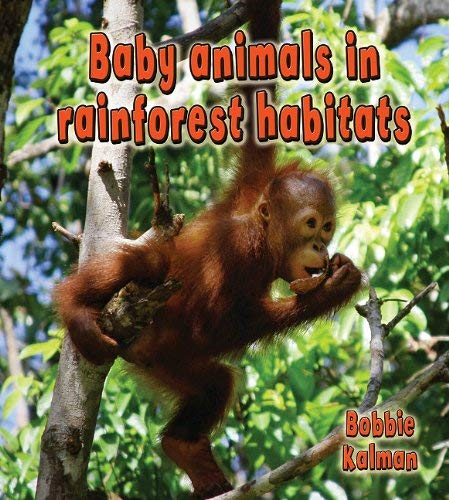 Baby Animals in Rainforest Habitats 9780778777328
