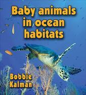 Baby Animals in Ocean Habitats 11083160