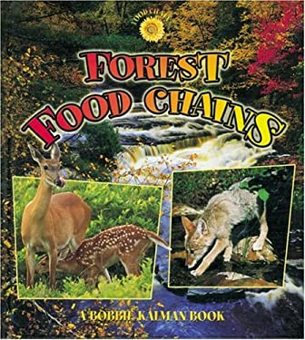 food chain forest. food chain in forest ecosystem. food chain in forest ecosystem
