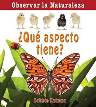 Que Aspecto Tiene? = How Does It Look?