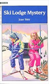 Ski Lodge Mystery 3014321