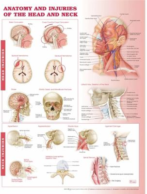 Anatomy and Injuries of the Head and Neck Anatomical Chart 9780781786706