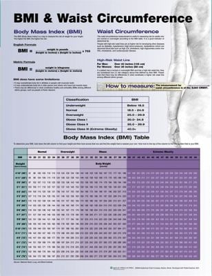 BMI and Waist Circumference