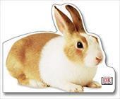 Bunny 3138303
