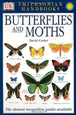 Butterflies and Moths 9780789489838