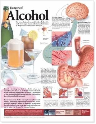 Dangers of Alcohol Anatomical Chart 9780781782395