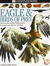 Eagle & Birds of Prey 3137377