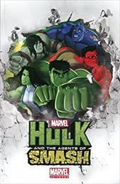 Marvel Universe Hulk 21510518