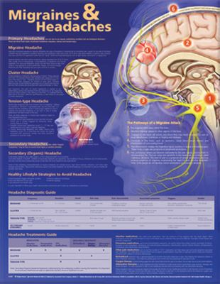 Migraines and Headaches Anatomical Chart 9780781776592