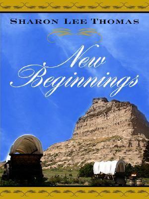 New Beginnings: 9780786288151