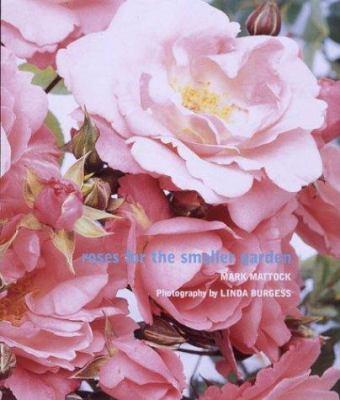 Roses for the Smaller Garden 9780789310828