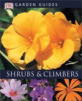 Shrubs and Climbers 3139162