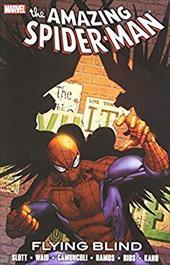 Spider-Man: Flying Blind 18864949
