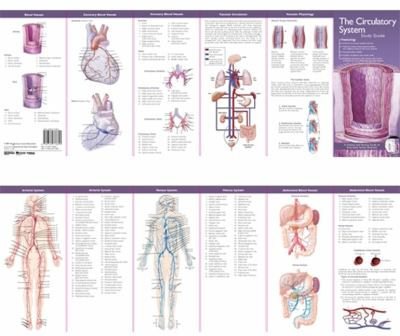 The Circulatory System 9780781776851