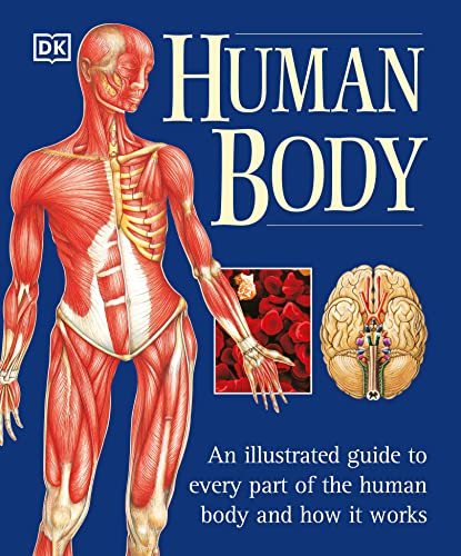 The Human Body 9780789479884