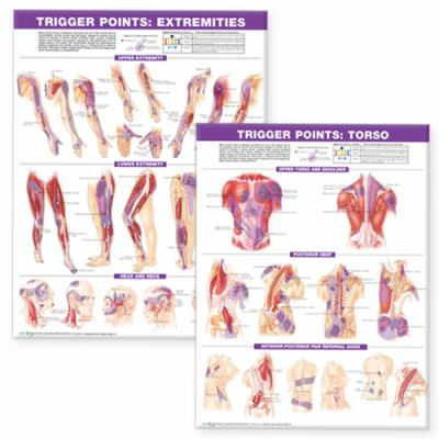 Trigger Point Chart Set: Torso and Extremities 9780781773065