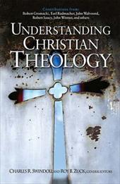 Understanding Christian Theology 3055649
