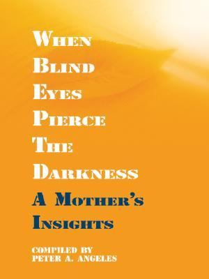 When Blind Eyes Pierce the Darkness: A Mother's Insights 9780786264575