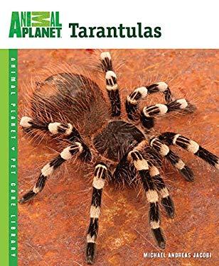 Tarantulas 9780793837106