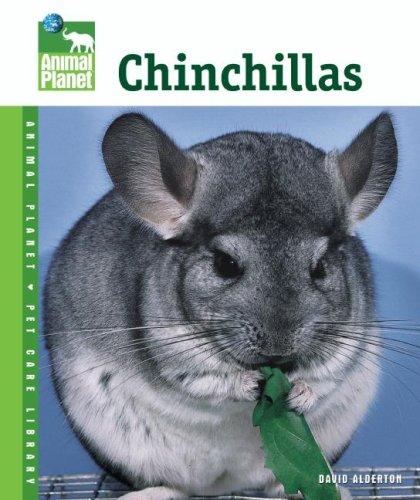 Chinchillas 9780793837908