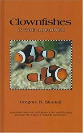 Clownfishes in the Aquarium 3189358