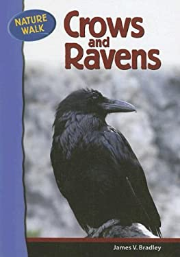 Crows and Ravens 9780791091159