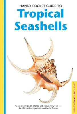Handy Pocket Guide to Tropical Seashells 9780794601935