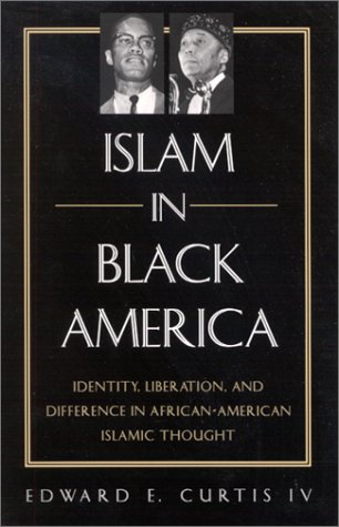 Islam in Black America: Identity, Liberation, and Difference in African-American Islamic Thought 9780791453704