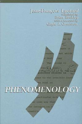 Phenomenology 9780791408056
