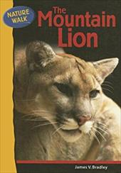 The Mountain Lion 3151016