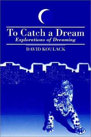To Catch a Dream: Explorations of Dreaming 9780791405024