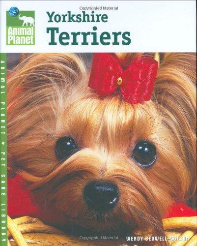 Yorkshire Terriers 9780793837502