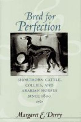 Bred for Perfection: Shorthorn Cattle, Collies, and Arabian Horses Since 1800 9780801873447