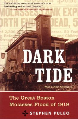 Dark Tide: The Great Boston Molasses Flood of 1919 9780807050217