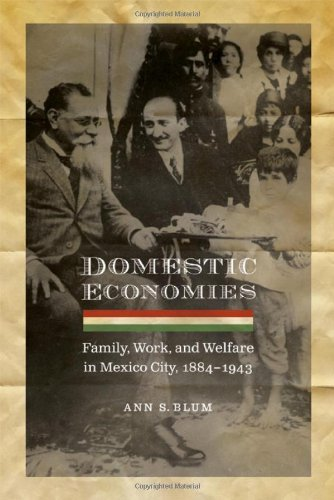 Domestic Economies: Family, Work, and Welfare in Mexico City, 1884-1943 9780803213593