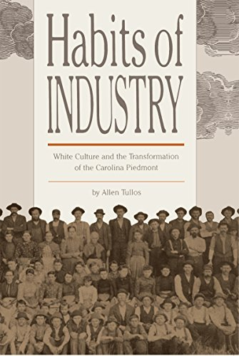 Habits of Industry: White Culture and the Transformation of the Carolina Piedmont 9780807842478