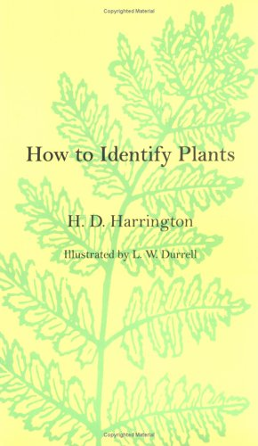 How to Identify Plants How to Identify Plants How to Identify Plants