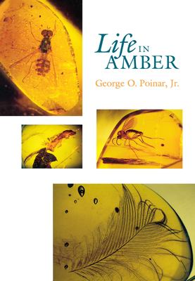 Life in Amber 9780804720014