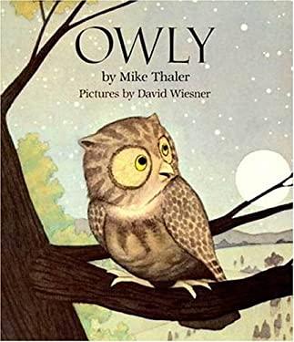 Owly 9780802775450