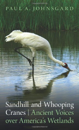 Sandhill and Whooping Cranes: Ancient Voices Over America's Wetlands 9780803234963