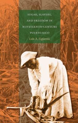 Sugar, Slavery, & Freedom in Nineteenth-Century Puerto Rico 9780807856109